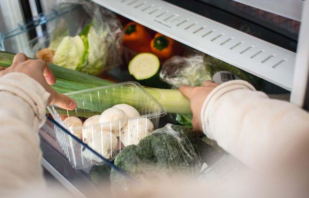 Alimentos no frigorífico