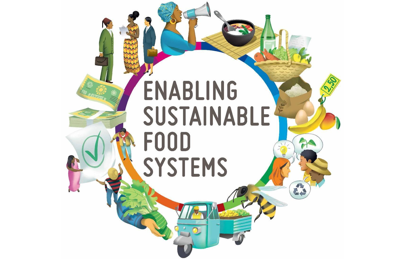 Possibilitando sistemas alimentares sustentáveis: Manual do Inovador