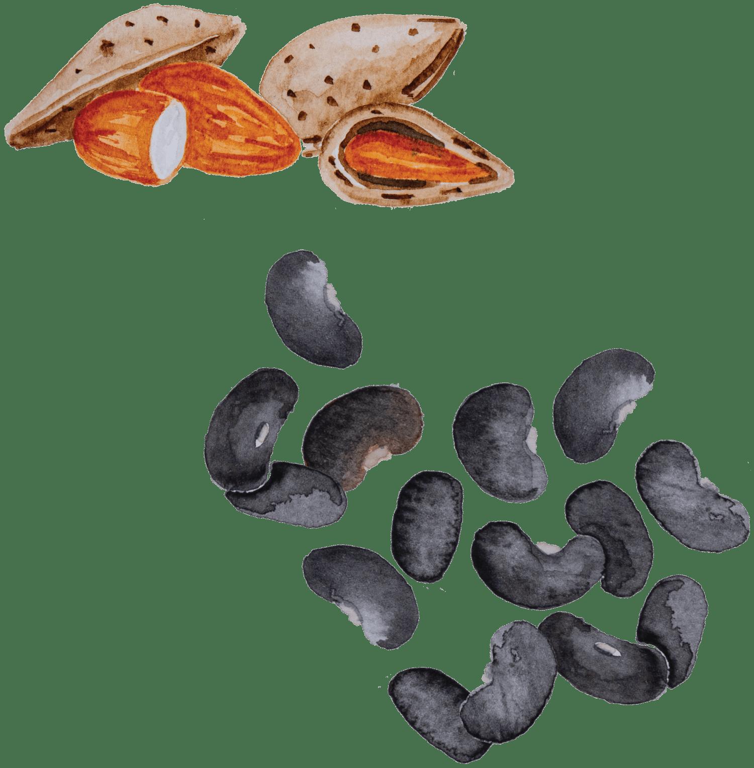 Amêndoas e Feijão-preto