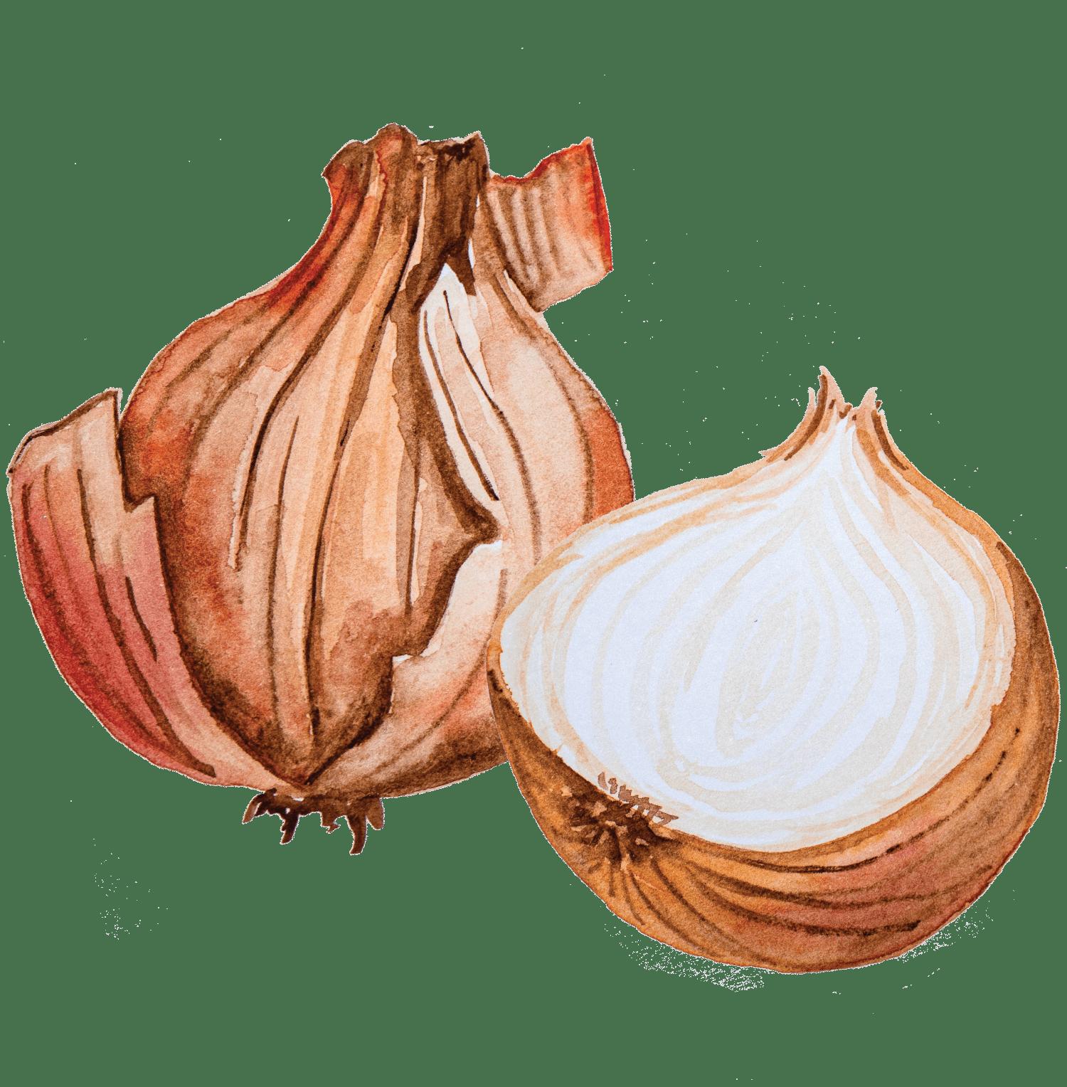 Espetadas de peru com abóbora e cebola