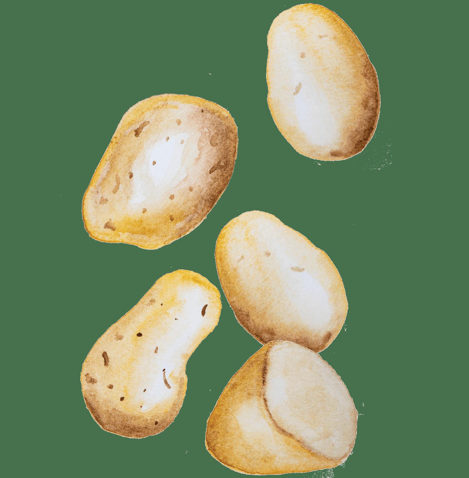 Hambúguer de truta e batatas à padeiro