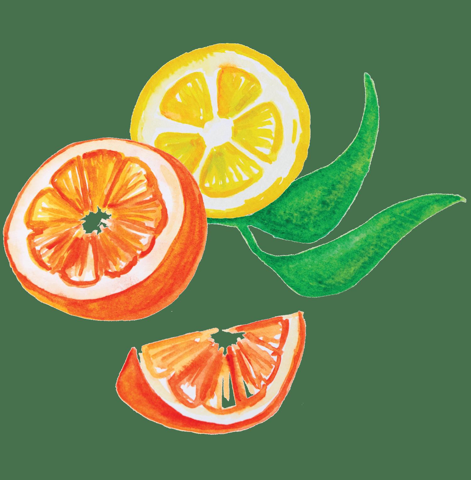 Cavala marinada em citrinos