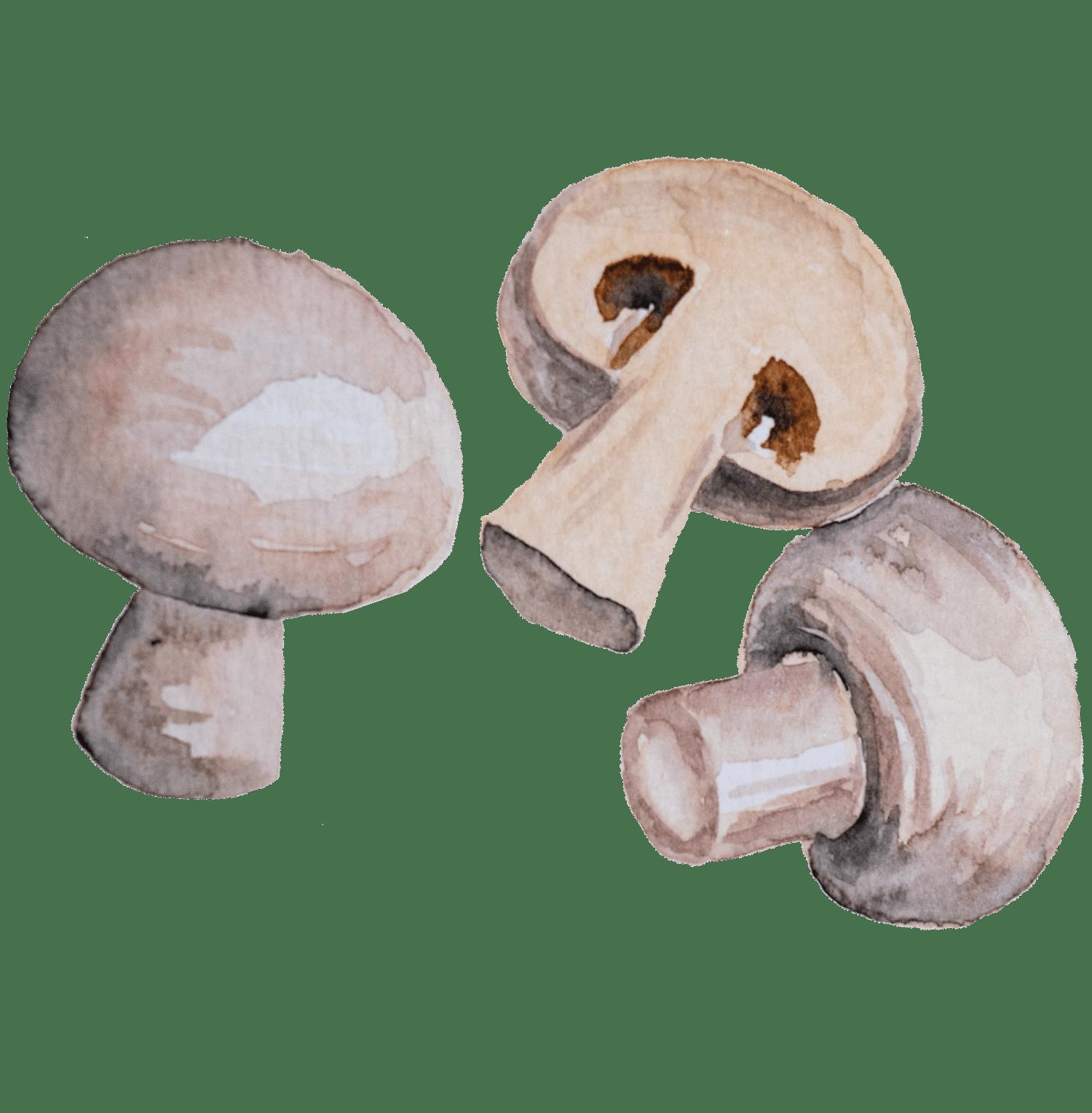Bifes de peru com molho de cerveja e cogumelos