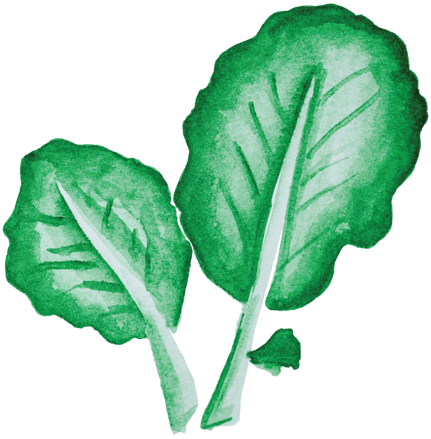 Caldo Verde de batata doce