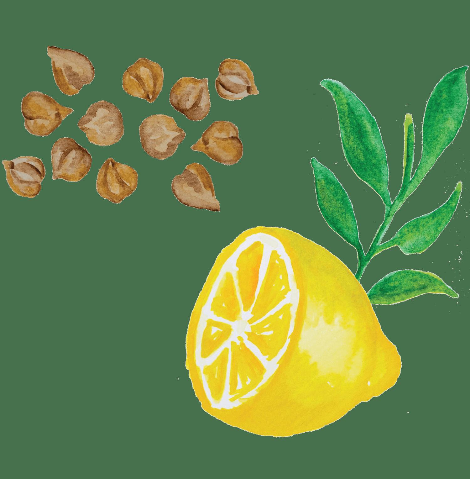 Pasta de Grão (Hummus)