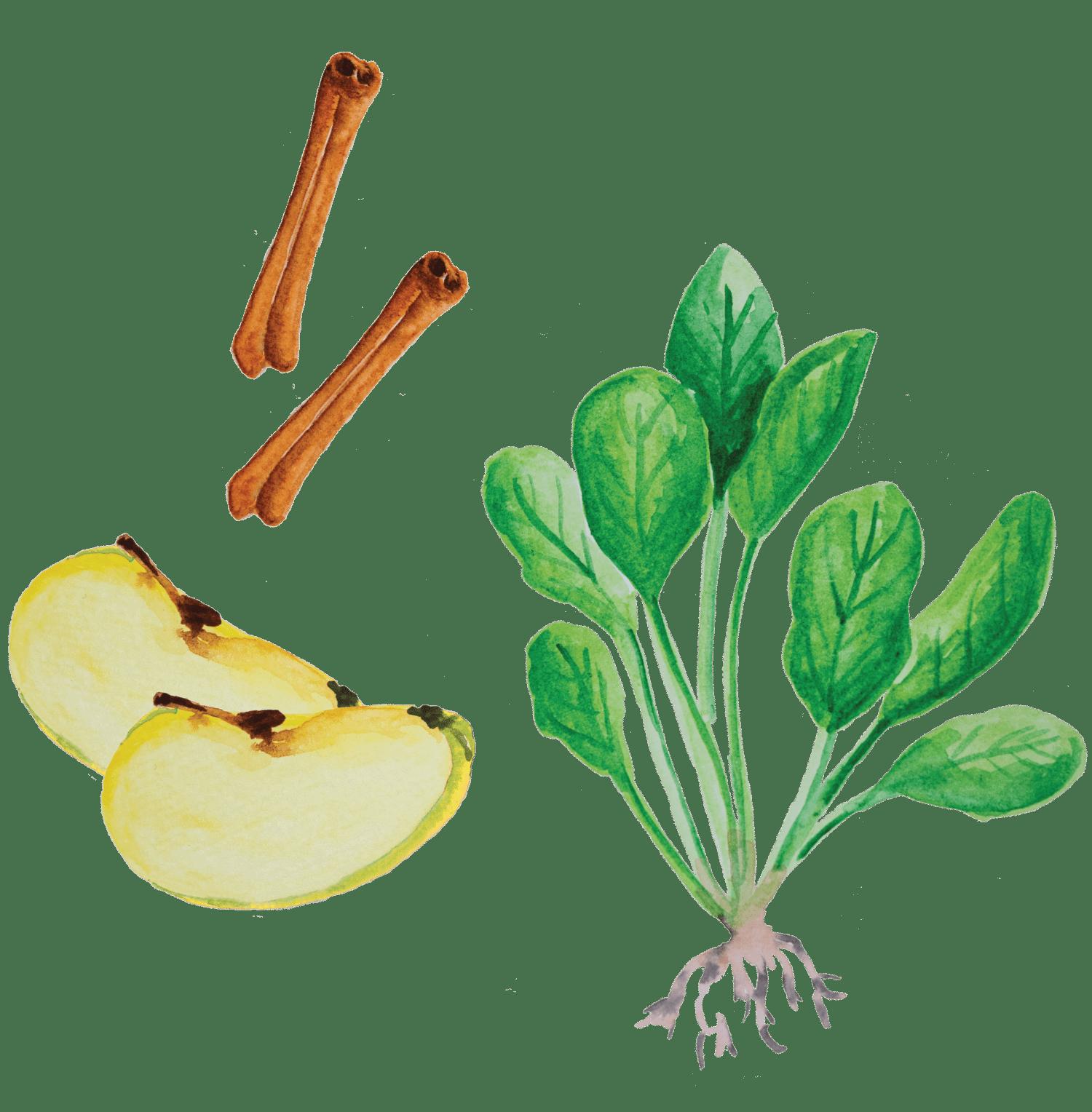 Batido de Maçã, banana e espinafre