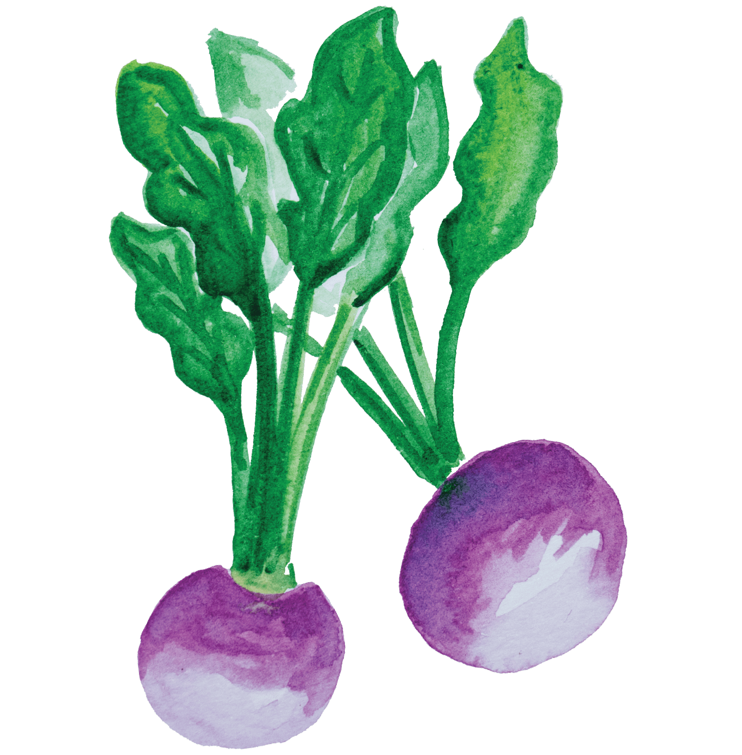 Bifanas mediterrânicas com legumes da época