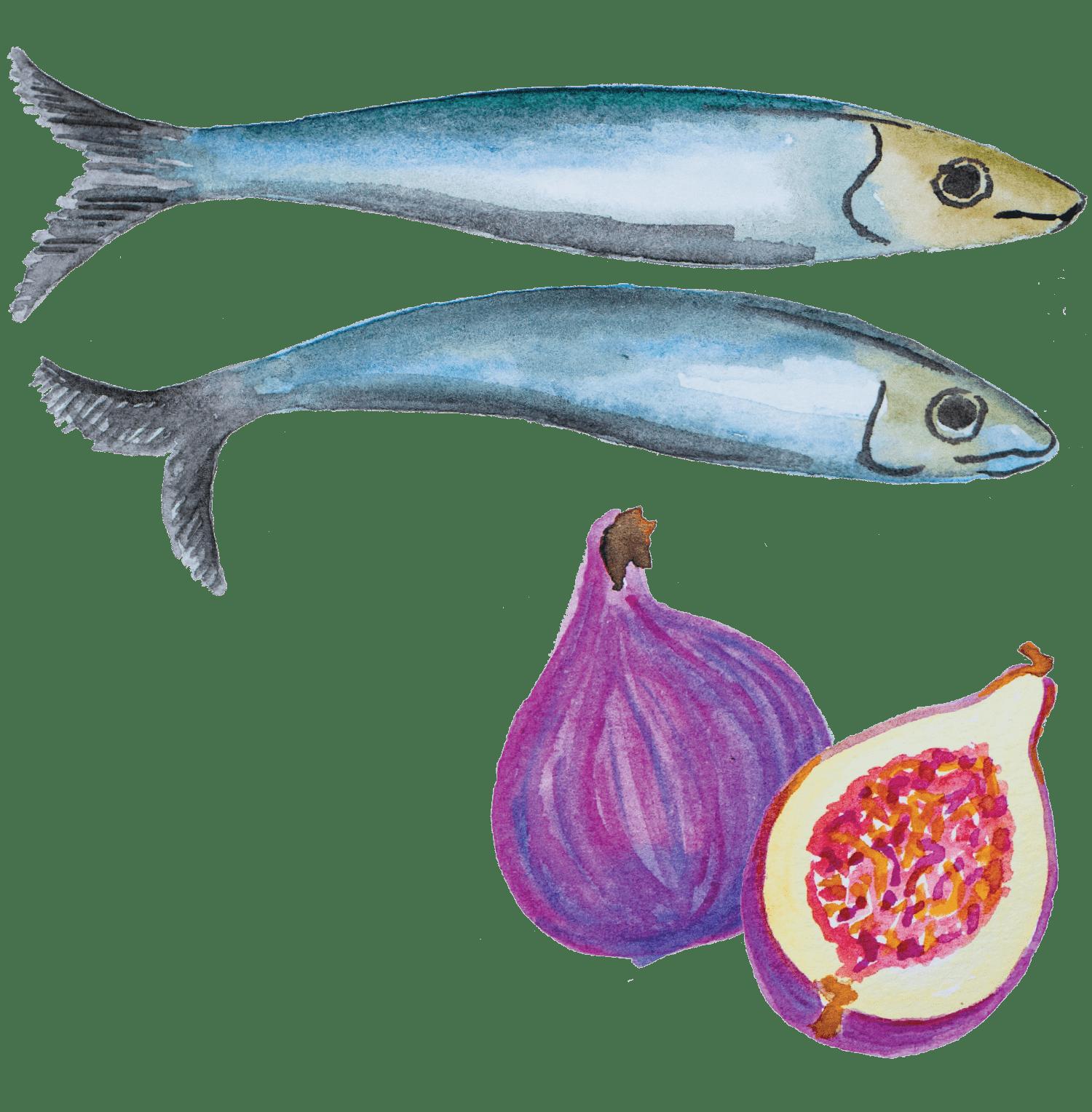 Tiborna de sardinhas portuguesas de conserva